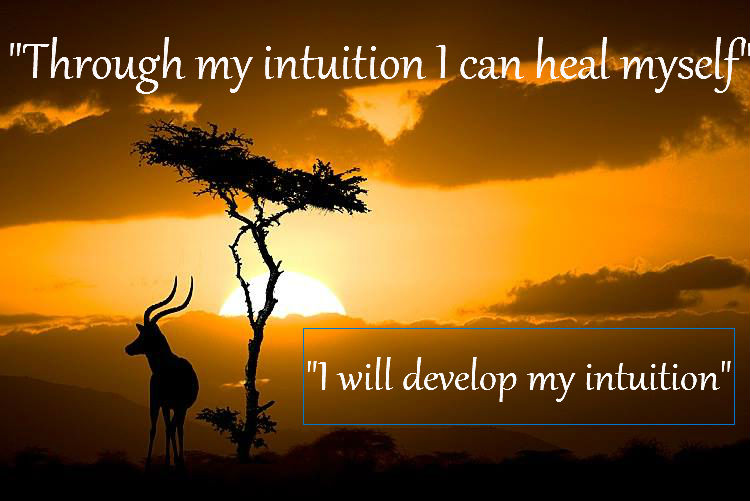 Working with Intuition